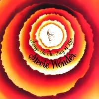 stevie wonder, songs in the key of life, t